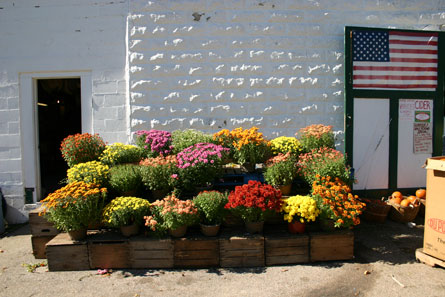 Mums at Steere Farm